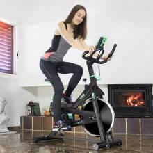 Preciosa Bicicleta Estática Power Active 7018